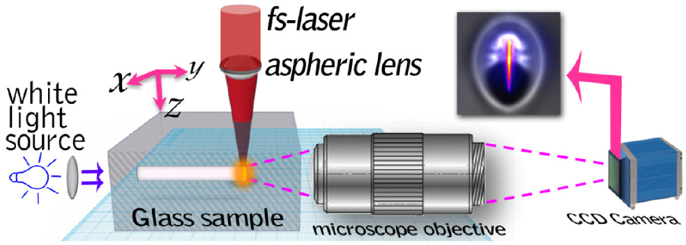 Controlling plasma distributions as driving forces for ion migration during fs laser writing