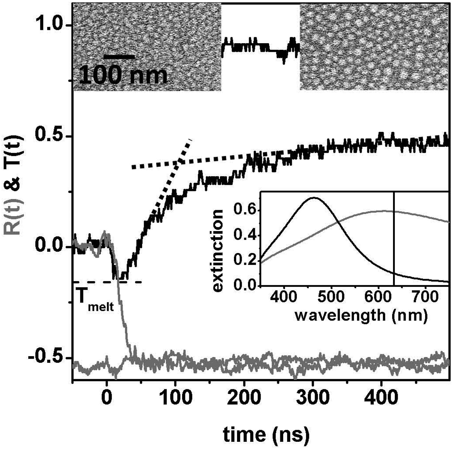 Dynamics of laser induced metal nanoparticle and pattern formation