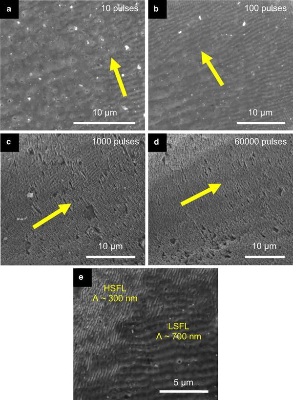 Growth of ZnO nanostructures by femtosecond laser irradiation of polycrystalline targets