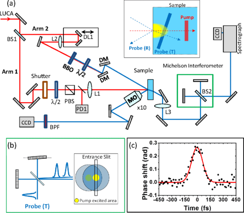 Simultaneous time-space resolved reflectivity and interferometric measurements of dielectrics excited with femtosecond laser pulses