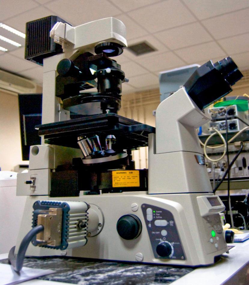 microscopio óptico grupo procesado por láser